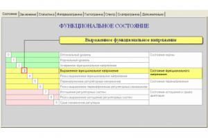 Аппаратно-программный комплекс Ритм-Экспресс-ВСР